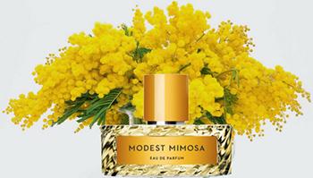 Kết quả hình ảnh cho MODEST MIMOSA vilhelm parfumerie